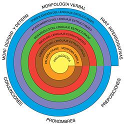 Estructura de Espiral MORFOSINTAXIS